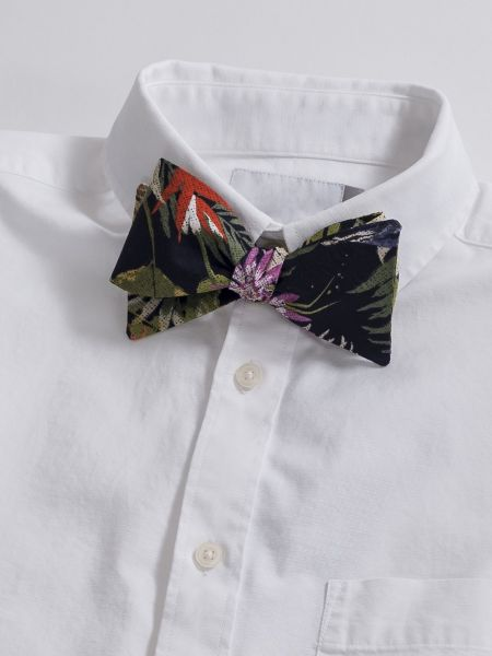 Tropic Palm Bow Tie