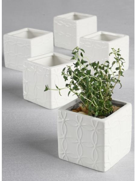 Circle Square Flower Pots