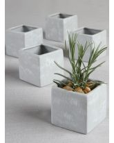 Square Flower Pots
