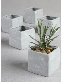 Square Flower Pots